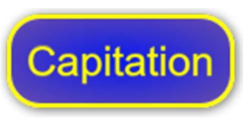 Capitation 2020